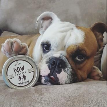 Natural Dog Company - Baume réparateur coussinets
